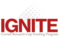 Ignite Program Logo